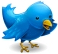 tweet-this-small